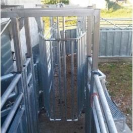 Санитарный загон приемки скота BLASAU