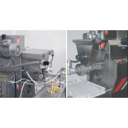 Pasta Extruder MAC 60 - 60VR ITALPAST