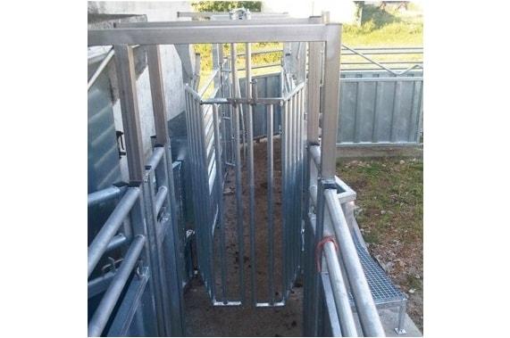Санитарный загон приемки живого скота BLASAU
