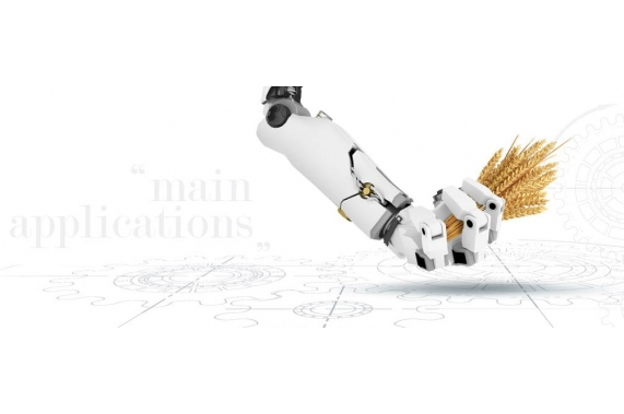 Автоматизация Alapala